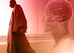 BuddhismBrain(1)