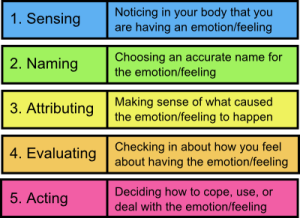 Our body reacts to our mental and physical sensations. We then label them good, bad or neutral. This determines our feelings. Our body and mind then acts on the evaluation of those feelings to create emotions.